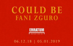 erratum-could-be-fani-zguro-copia-1