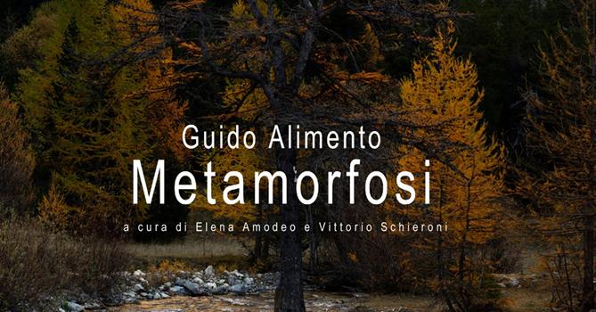made4art-guido-alimento-metamorfosi-1