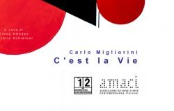 Made4Art - Carlo Migliorini Amaci